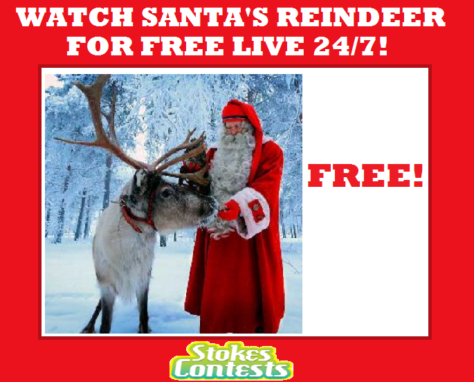Image Watch Santa's reindeer for FREE Live 24/7!!