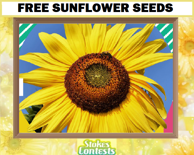 Image FREE Sunflower Seeds!